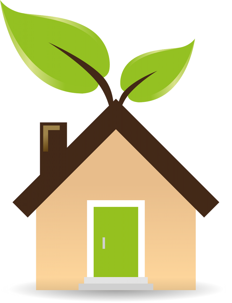 4 Perfect Eco-Friendly Habits to Adopt at Home in 2021